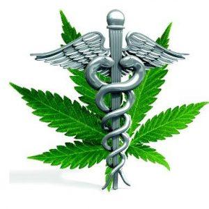 Medicinales (CBD)